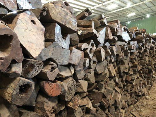gỗ trắc lào
